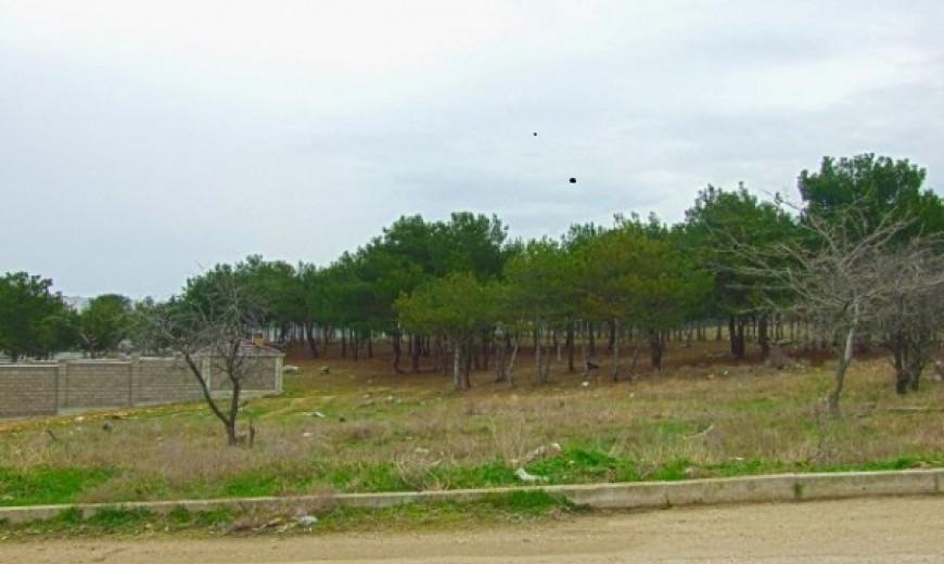 Зем. участок 12 соток в районе Красной Горки на ул. Танкистов